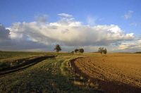 plateau-de-saclay-toussus-j1-dg