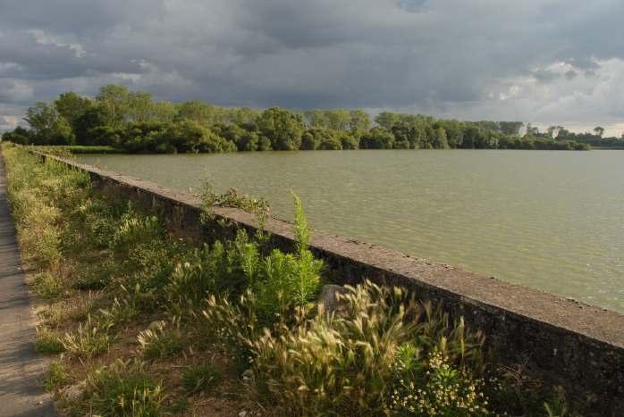 Etang-Vieux-de-Saclay-Grand-Parc-de-Versailles-026-jdg-agpv