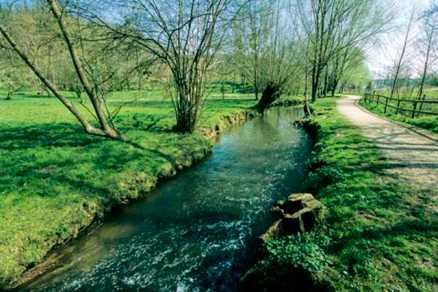 La-Bievre-Buc-Grand-Parc-de-Versailles-020-jdg-AGPV